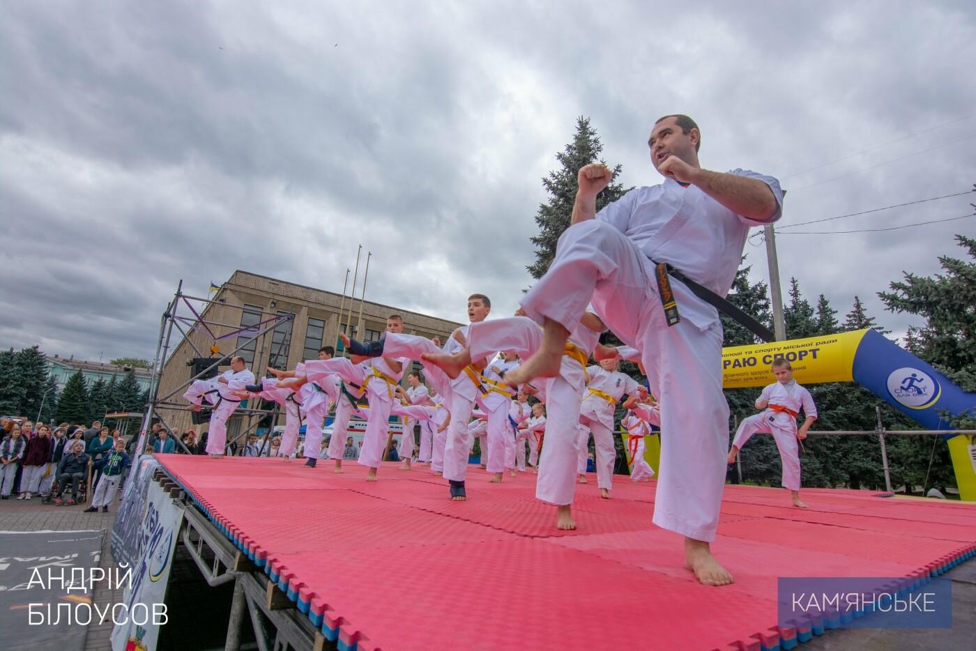 В Каменском состоялся фестиваль восточных единоборств, фото-10