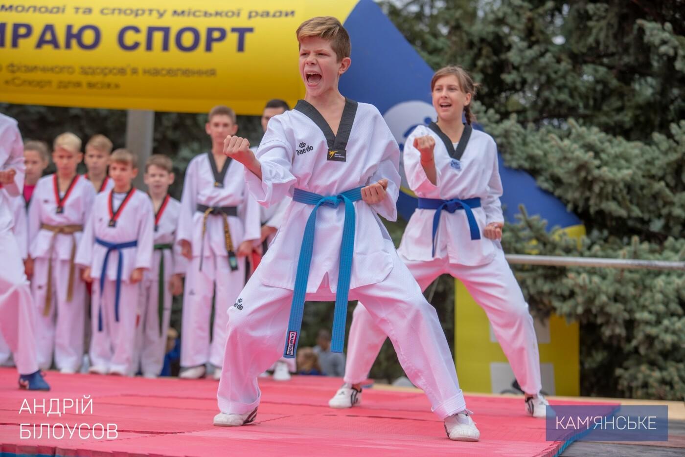 В Каменском состоялся фестиваль восточных единоборств, фото-2