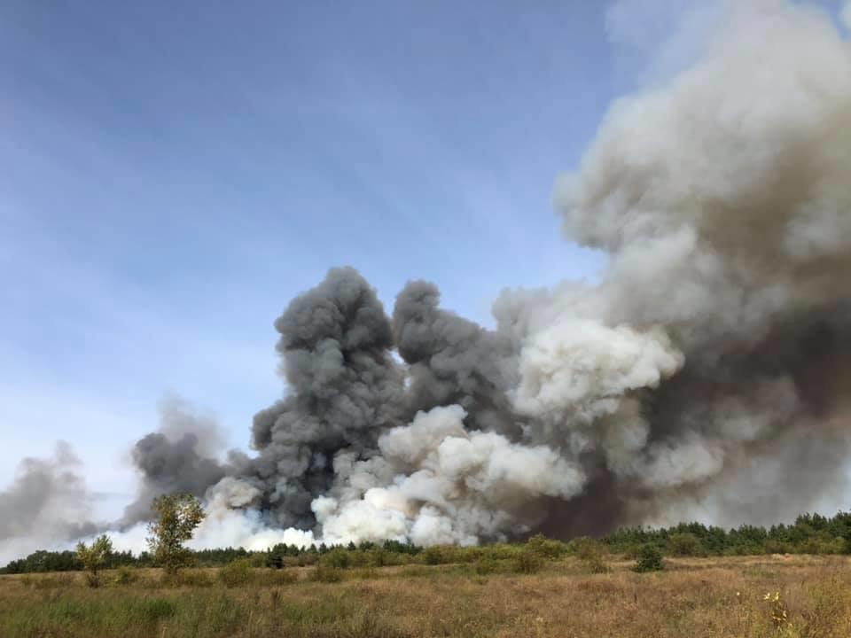 Юные каменчане с риском для жизни проявили мужество и помогали спасателям тушить лесной пожар, фото-4