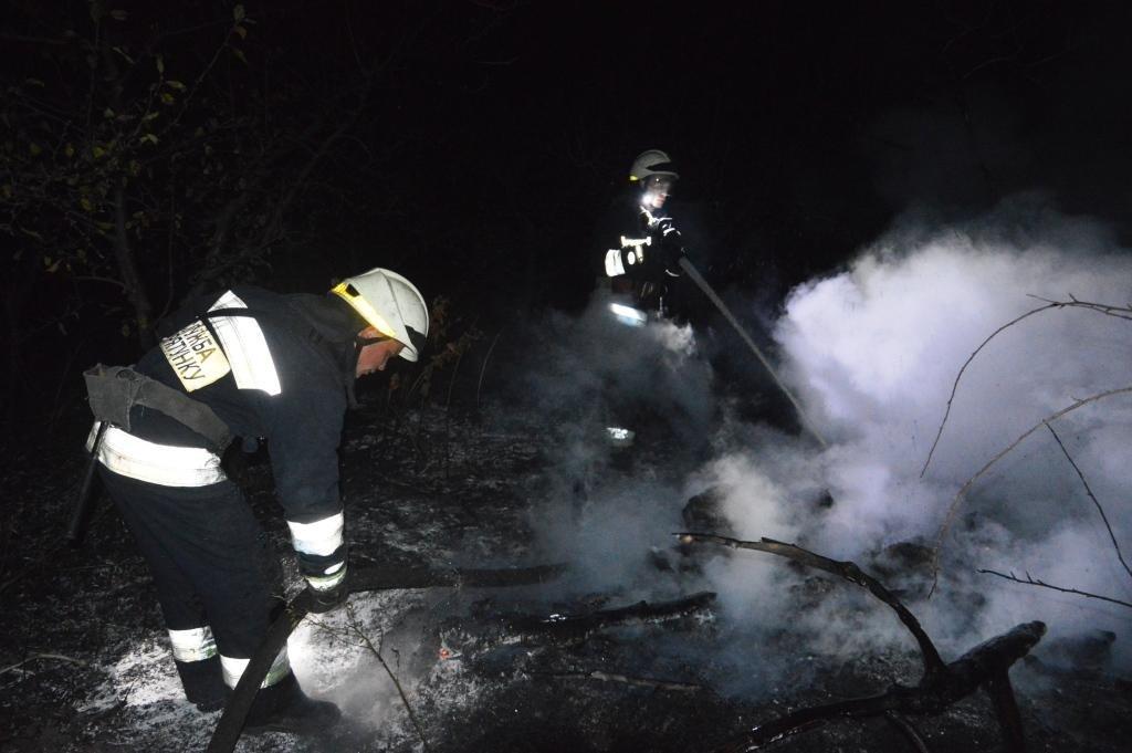 За прошедшие сутки на Днепропетровщине выгорело 72 гектара экосистемы, фото-1