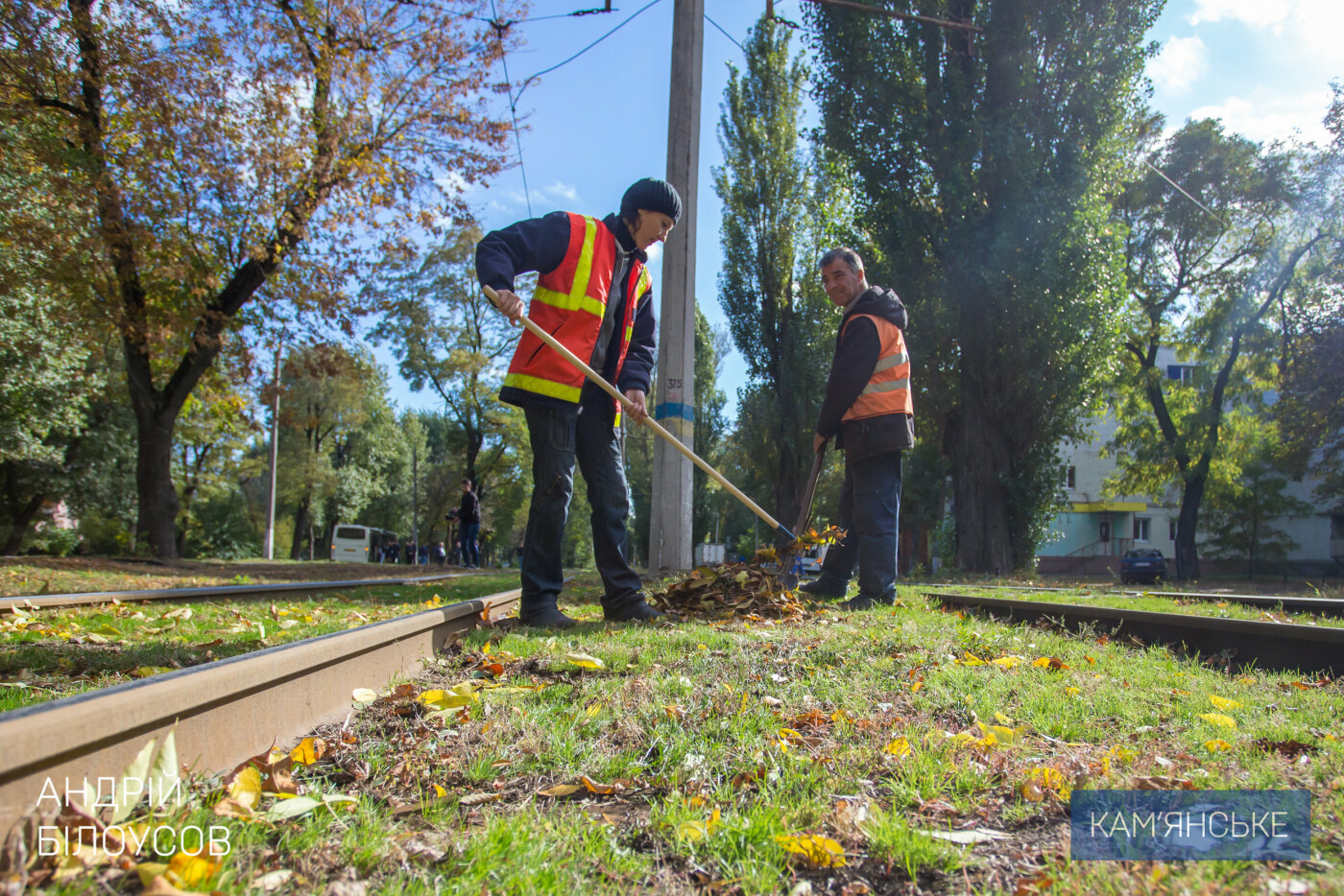 Уборка листвы в Каменском - на контроле у мэра, фото-3