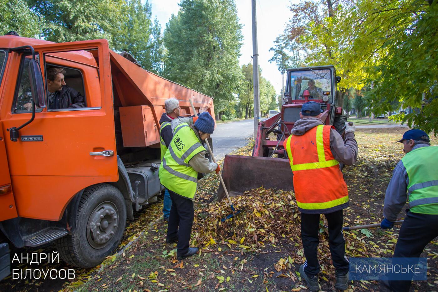 Уборка листвы в Каменском - на контроле у мэра, фото-4