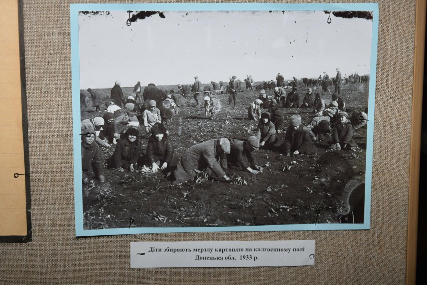 В Каменском вспоминали жертв голодомора 1932-1933 годов, фото-10