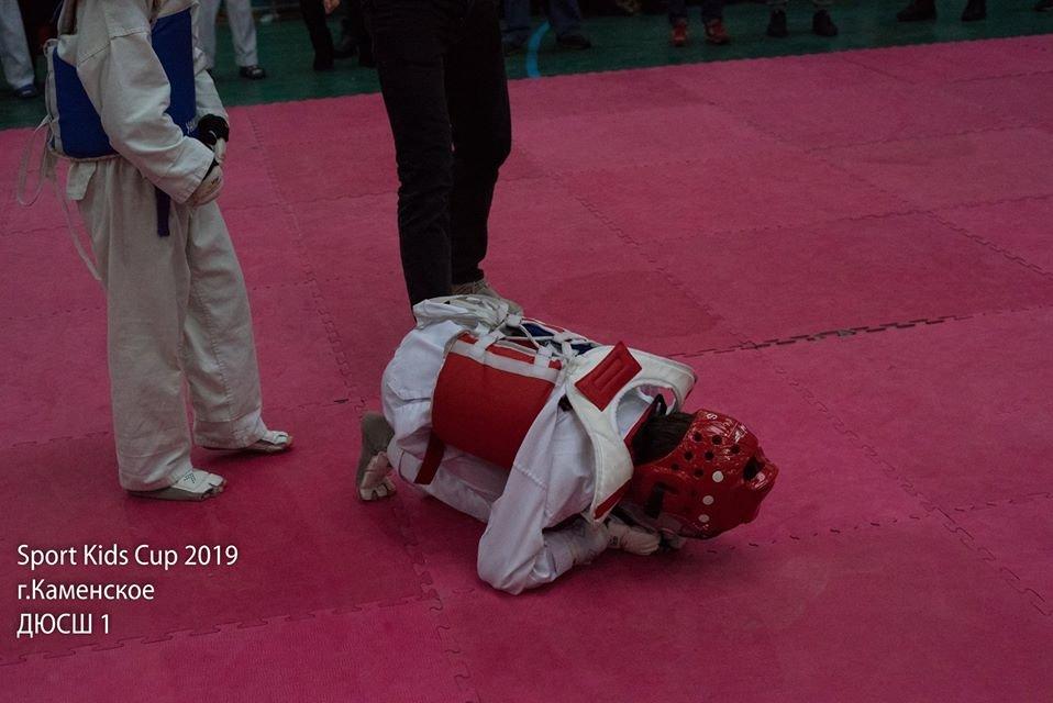 В Каменском прошел открытый турнир по тхэквондо, фото-3