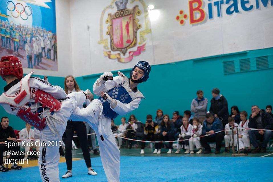 В Каменском прошел открытый турнир по тхэквондо, фото-5