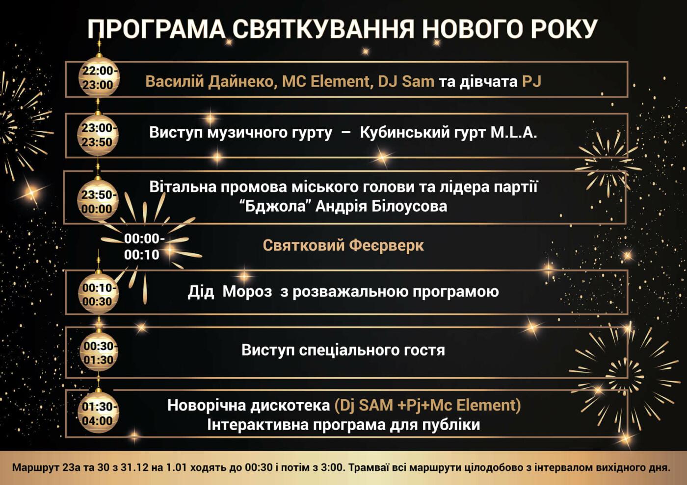 Концерт, фейерверк и поздравления: каменчан приглашают отпраздновать Новый год у главной елки , фото-1