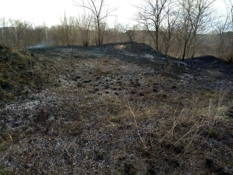 В Каменском горит экосистема, фото-3