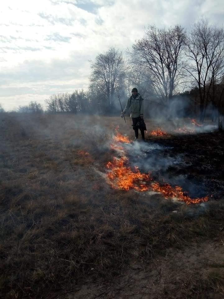 В Каменском горит экосистема, фото-5