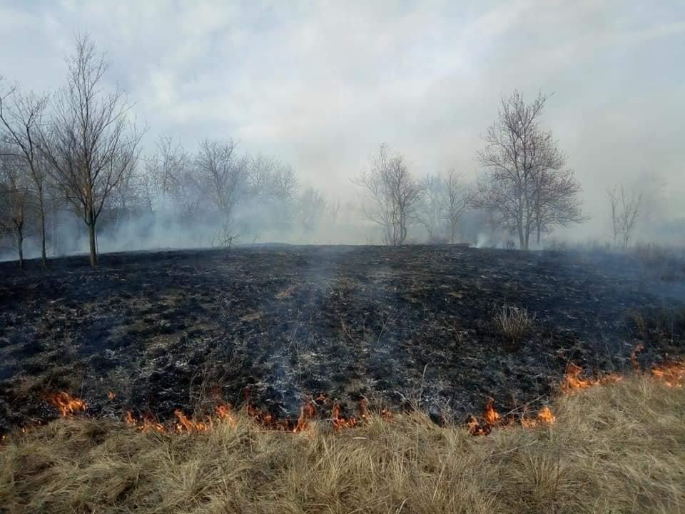 В Каменском горит экосистема, фото-12