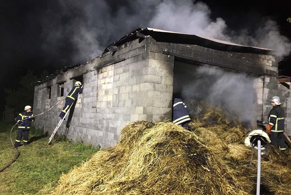 В Криничанском районе сгорели полторы тонны сена, пристройка и гараж, фото-2