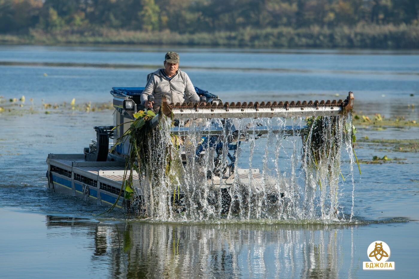 У Карнаухівці чистять річку Дніпро, фото-2