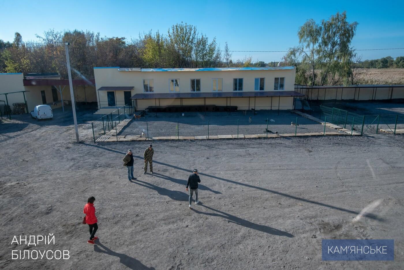 В Каменском открыли приют для бездомных животных, фото-1