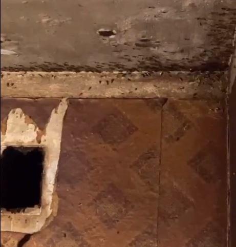 Останки животных, драки и фекалии на стенах: как живет семья на Никопольской, фото-1