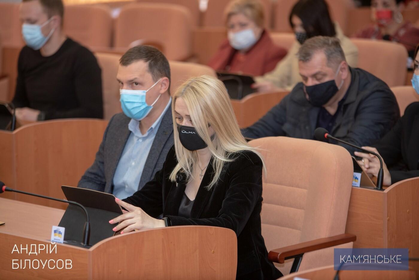 В Каменском на ДМК проведут экологический аудит, фото-1