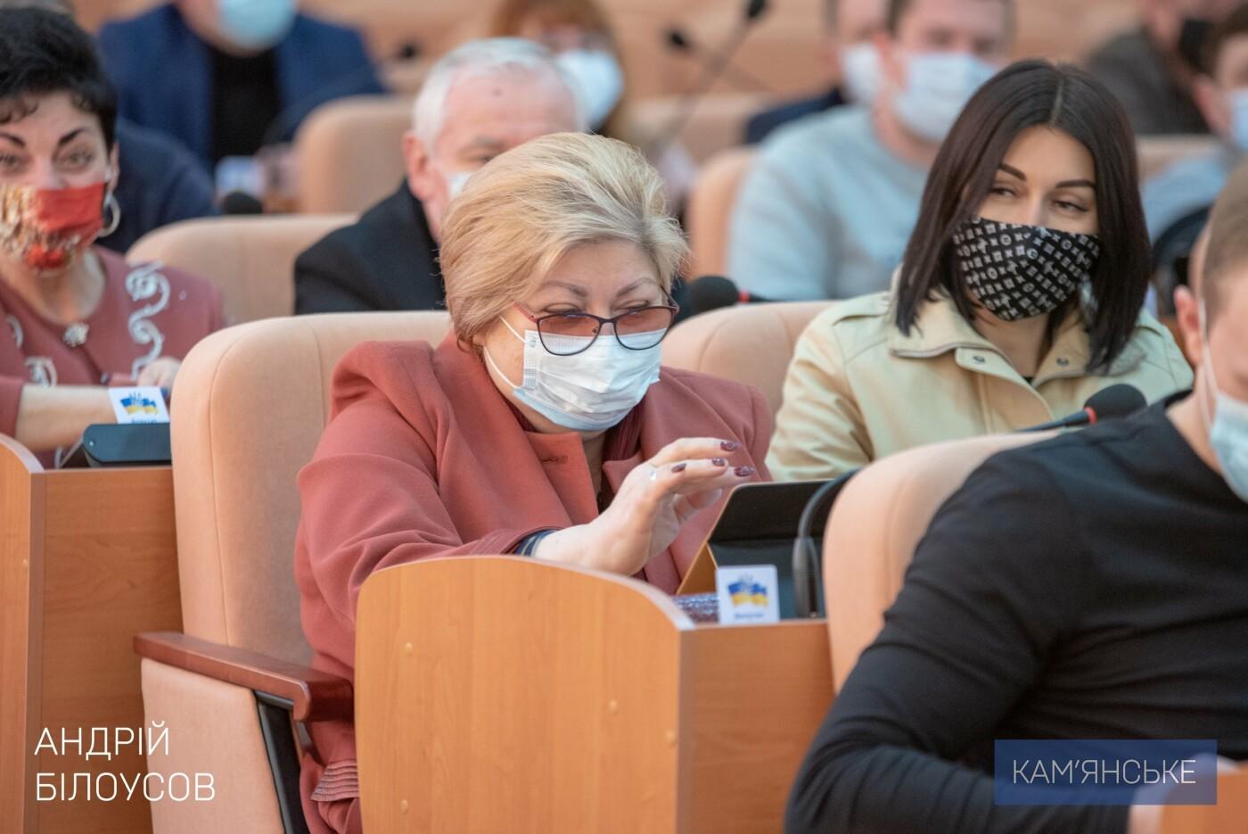 В Каменском на ДМК проведут экологический аудит, фото-2